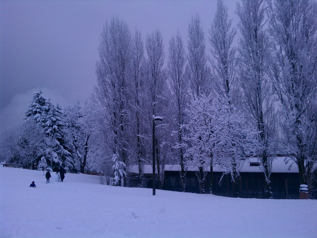 Seattle snow, 2012-01-15, outside my apartment.