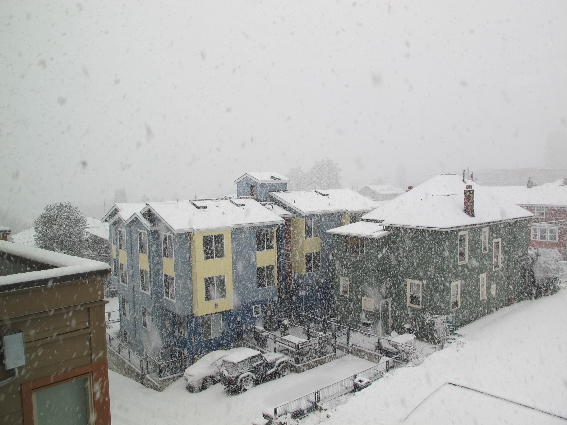 Seattle snow, 2012-01-15, from my apartment. Where's the city?
