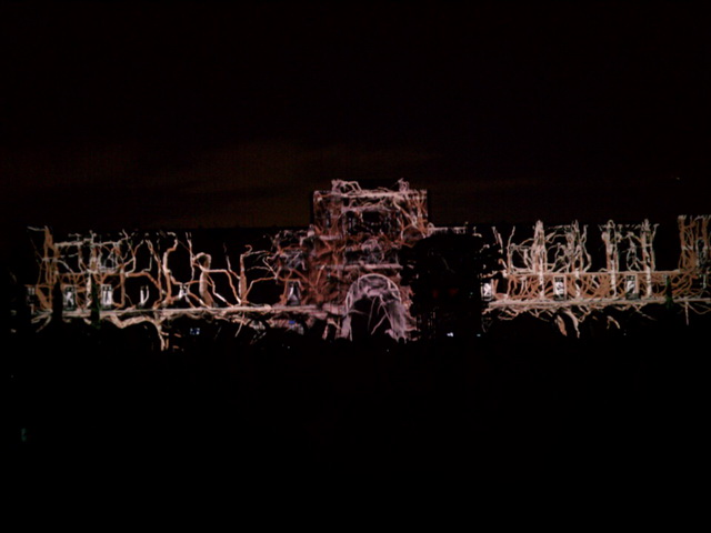 Centennial Spectacle: Vines projected onto Lovett Hall.
