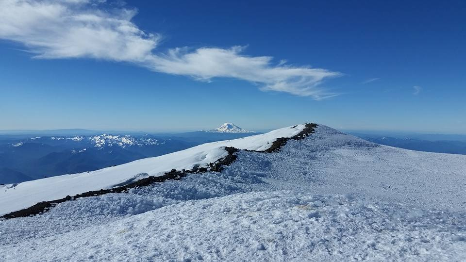 Mount Adams, as seen from Columbia Crest (picture by Vicki).